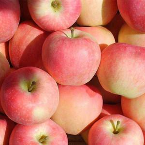 Dubai Fruit Import, Dubai Fruit Import Suppliers and Manufacturers