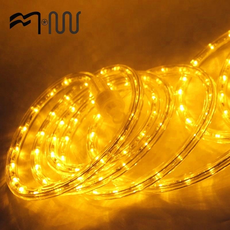 China Manufacturer waterproof different colors led flash rope light