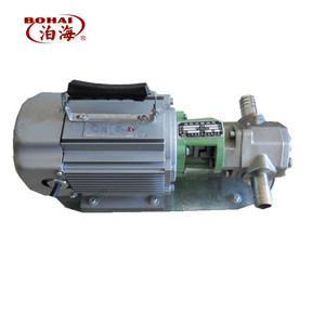 WCB magnetic connection portable diesel oil electric gear pump