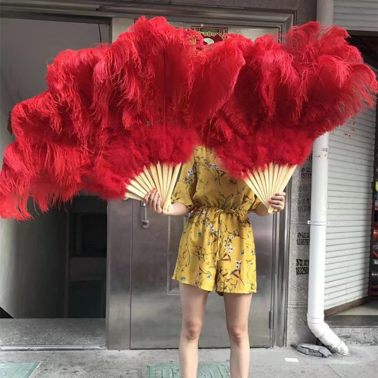 Wholesale cheap dye color big ostrich feather fan for decoration and dance