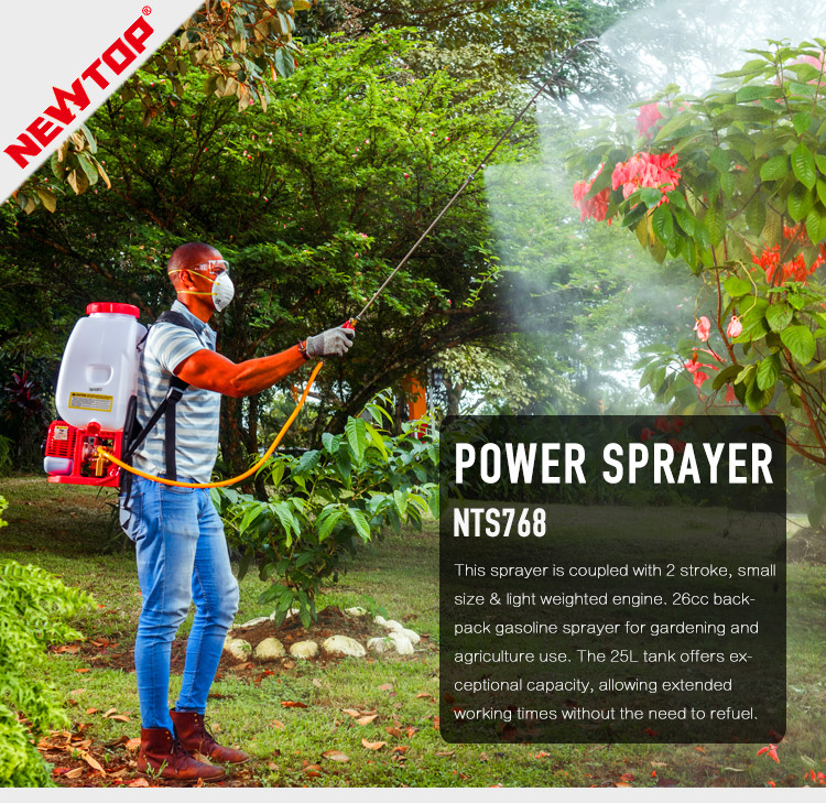 Pertanian Motor Bensin Power 25L Bensin Ransel Sprayer NTS768
