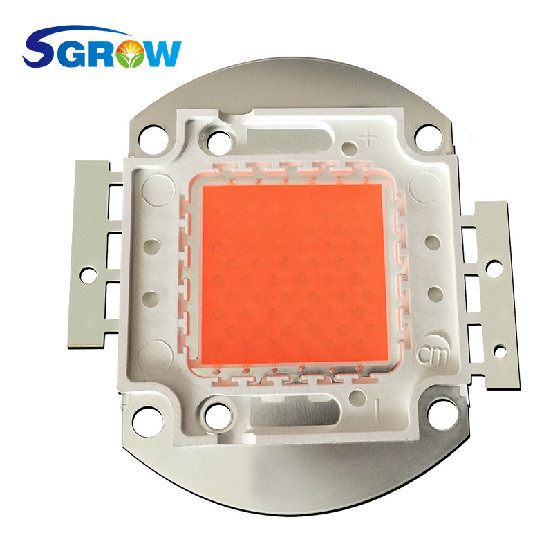 10w 30w 50w 100w Full Spectrum cob led Grow Light Chip .Best led diodes for DIY led grow light