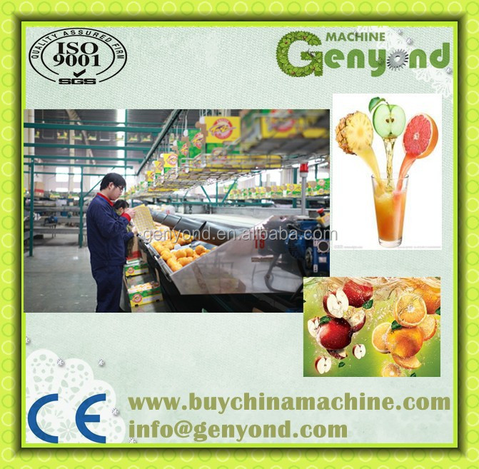 Shanghai Turkey Orange Juice Processing Machine/line
