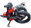 20 Inch 250W 36V 10ah lion battery aluminum alloy frame portable folding fat bicycle