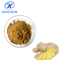 Factory supply Chinese high quality fresh ginger extract