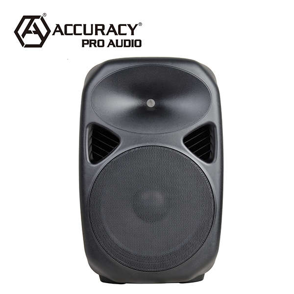 Akurasi Pro Audio CQ15 300 W Terus Power 15 Inch Karaoke Speaker Box