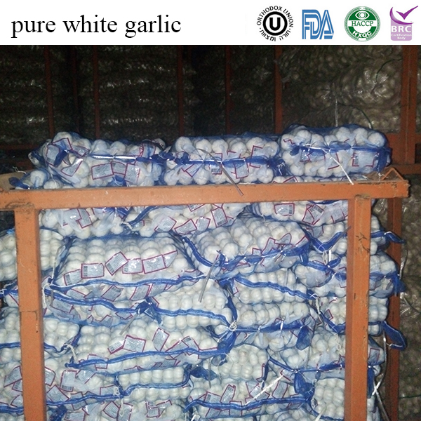 jining fenduni whole fresh garlic