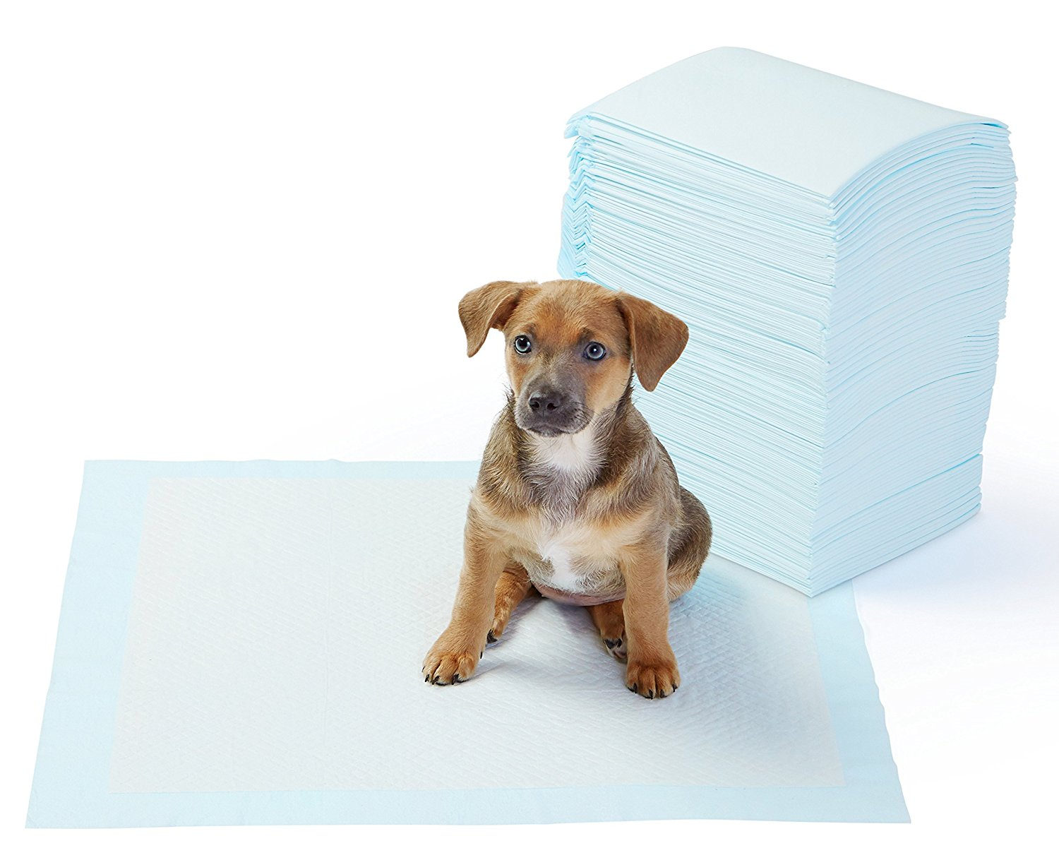 Hot selling High quality Super absorbent pee pad puppy pad  training pad for pet dog and cat