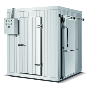 Customized 40 feet freezer containers stainless steel cold room