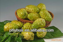 Natural ingredients High quality Noni extract noni