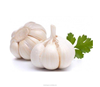 /product-detail/import-chinese-garlic-directly-from-fresh-natural-garlic-factory-60463498543.html