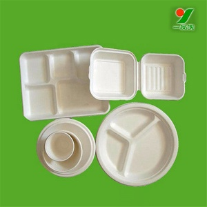 Biodegradable paper compartment disposable lunch food tray