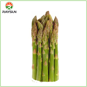 Organic canned green asparagus