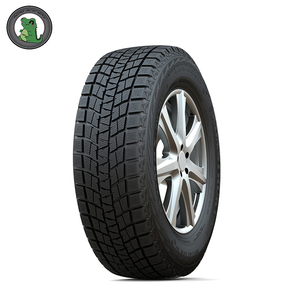 Habilead brand 14 inch pcr tyre , Winter range Ice Max tire RW501 185R14C with DOT GCC EU label