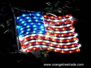Led Rope Light Motif July 4th American Flag Buy