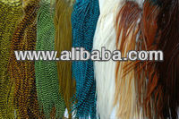 Rooster Saddle Feathers