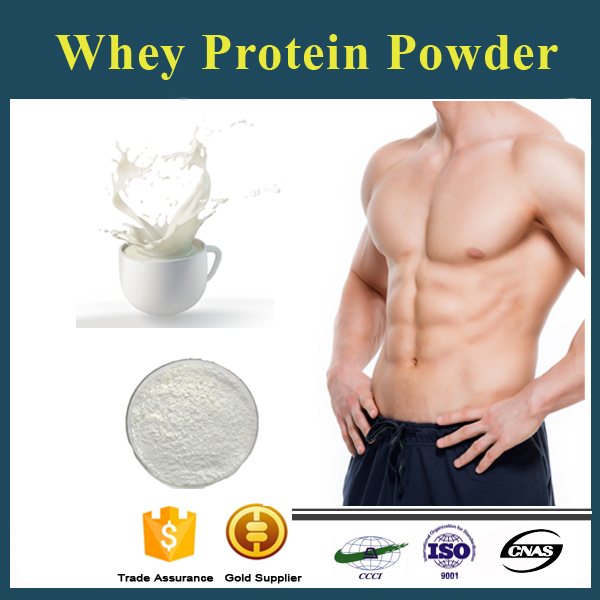 Wholesale Whey Protein Powder