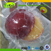 Wholesale Frozen Fruits Of Yellow IQF Plum