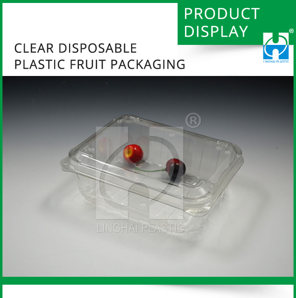 Plastic box for fruit packaging Clear Disposable Plastic Fruit Packaging