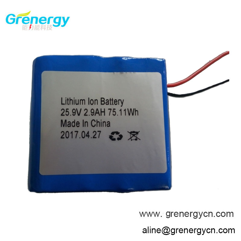 7S1P 3.7V 18650 Battery Lithium Ion Battery 25.9V 2.9Ah for Etwow scooter with Pannasonic Battery Cell