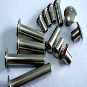 Cheap price semi tubular rivet from China supplier Long Wei Wang