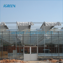 Venlo type flower multi span commercial greenhouse