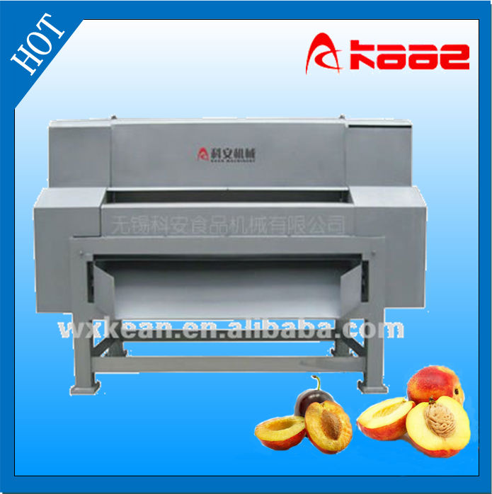 Fruit stone removing and pulping machine