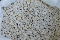 Thick (Plake) White Kidney Beans