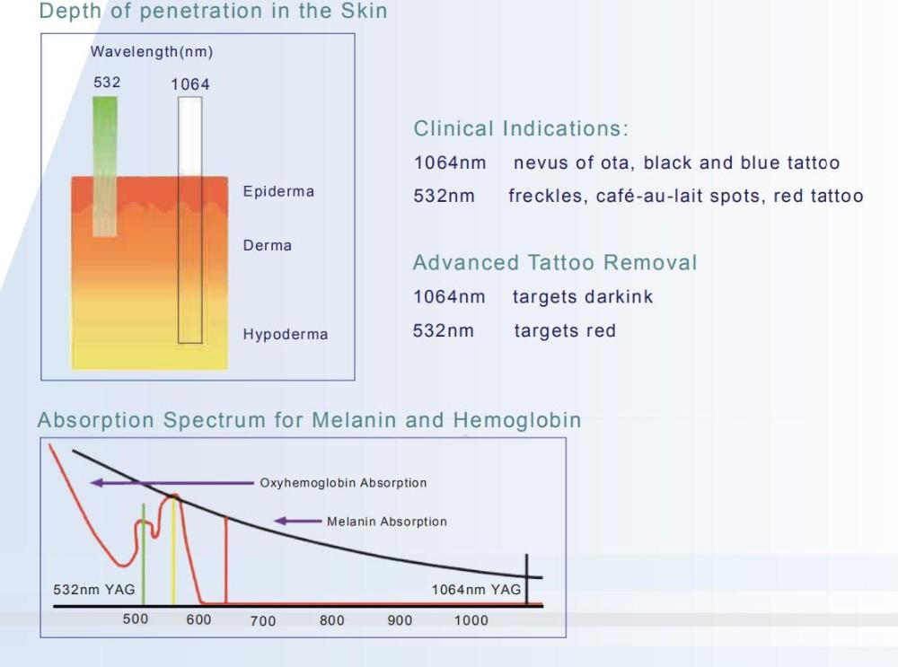 skin-penetration-depth-download-pinay-celebrity