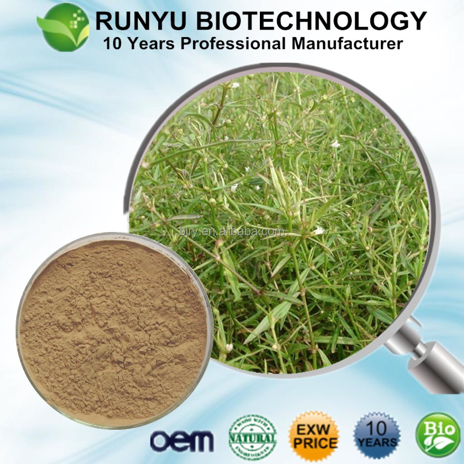 10 Years manufacturer supply organic Hedyotis diffusa Extract, Oldenlandia extract in bulk