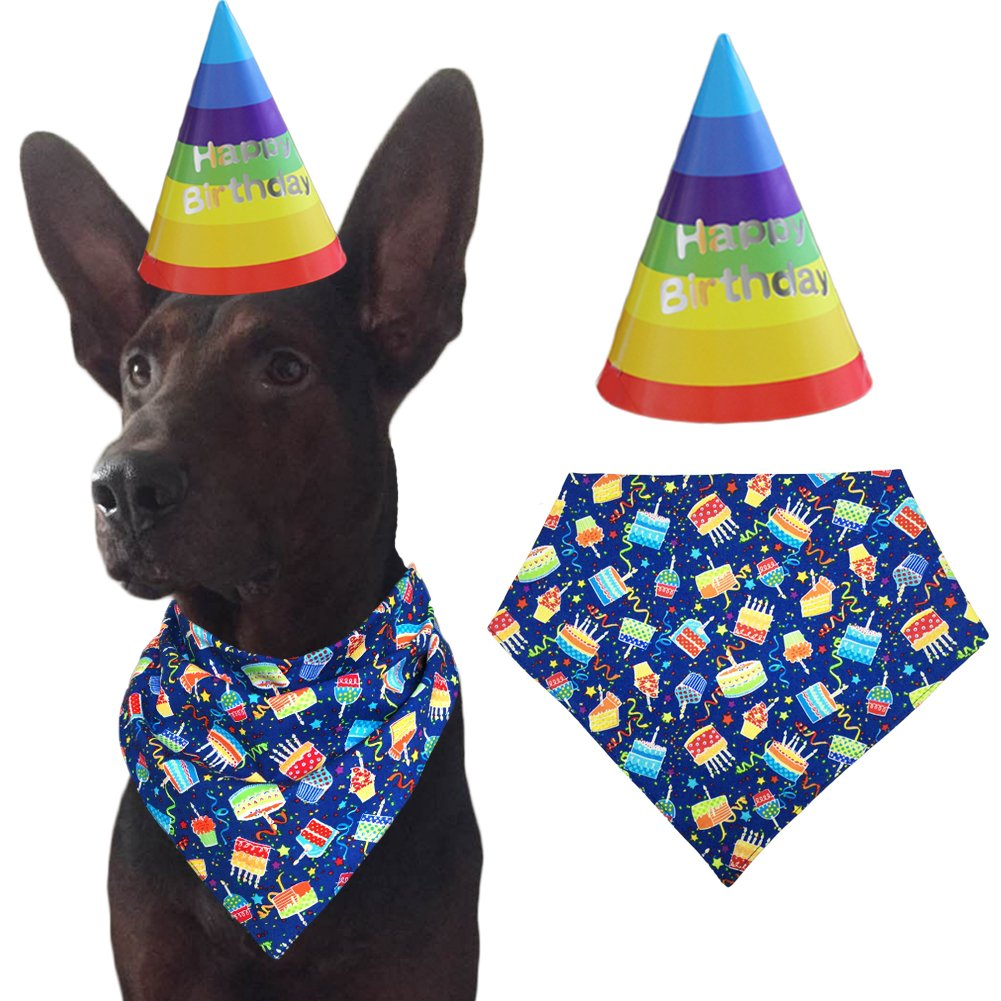 Dog Birthday Party Decorations Kit By Blast In A Box Blue Hat