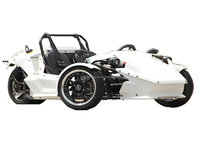 top quality trike car ztr trike roadster 250cc factory hot selling buggy