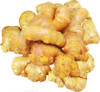 extract ginger oil ginger lily essential oil
