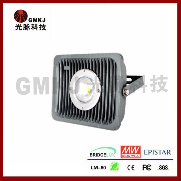 Module Photocell Available Bridgelux Cob Outdoor Flood Light Mini Projector
