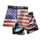 Fashionable custom elastic waistband european flag printed teen male underwear
