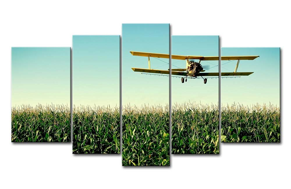 So Crazy Art 5 Panel Wall Art Painting Plane Airplane Flight In Greens Field Corn-Cob Sun Prints On Canvas The Picture Military Pictures Oil For Home Modern Decoration Print Decor