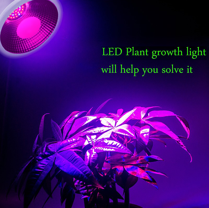 wholesale led grow lights aluminum housing IP65 15w e27 led spotlight type  for fruits and vegetables
