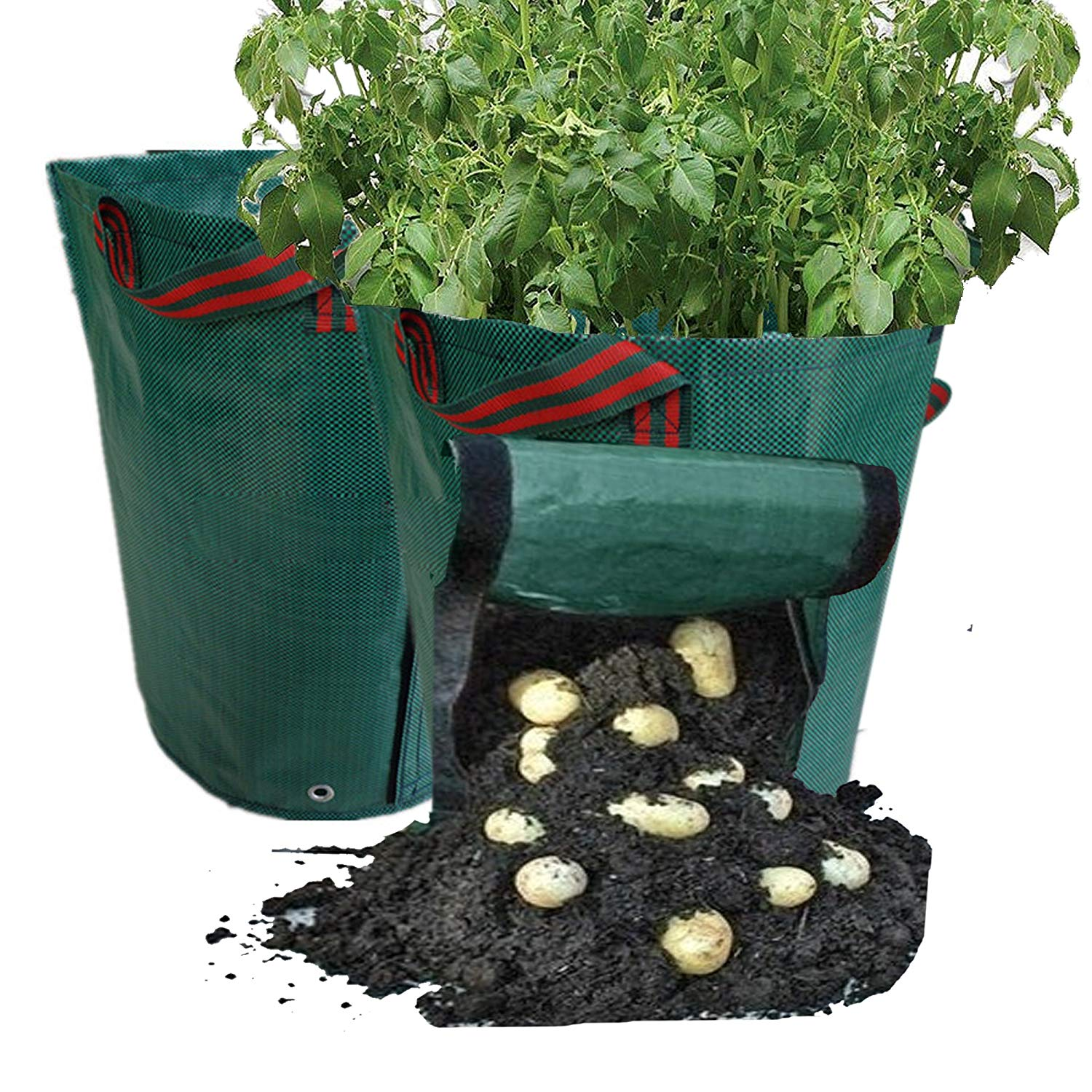 Univegrow 14 Gallons Garden Potato Planter Bags 2PCS, Growing Planting Bag for Vegetable Potato, Carrot, Tomato, Onion