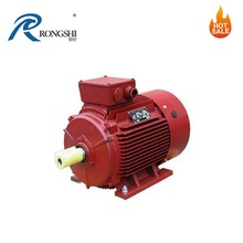 High Efficiency Cast Iron Three-Phase Protection Class IP55 Asynchronous Motor