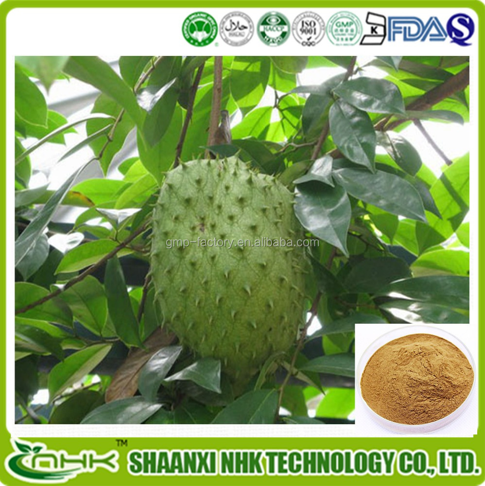 GMP Manufacturer Supply Anti Cancer Ingredient organic soursop juice extract / soursop juice extract Powder