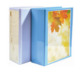 High quality A4 plastic file folder with metal 4 post ladder,transparent inserts pocket