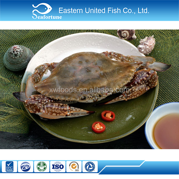 alibaba gold supplier sea crab whole round
