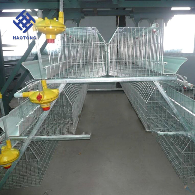 Factory supply a type battery cage for poultry layers/automatic chicken laying egg cages/brooder chicken coop