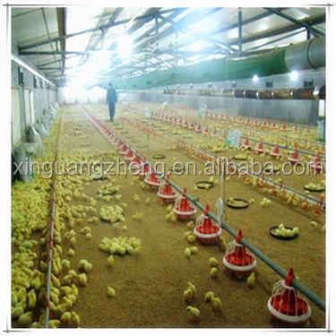 Commercial Chicken House commercial chicken house, commercial chicken house suppliers and
