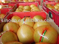 Sweet Honey Pomelo Fruits