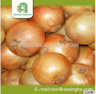 Fresh Yellow Onion Exporters In China - Buy Fresh Yellow,Onion  Exporter,China Product on Alibaba com