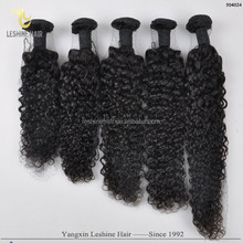 2015 Top Selling Products Own Brand Distributorships Available One Donor kinky curly human hair weave