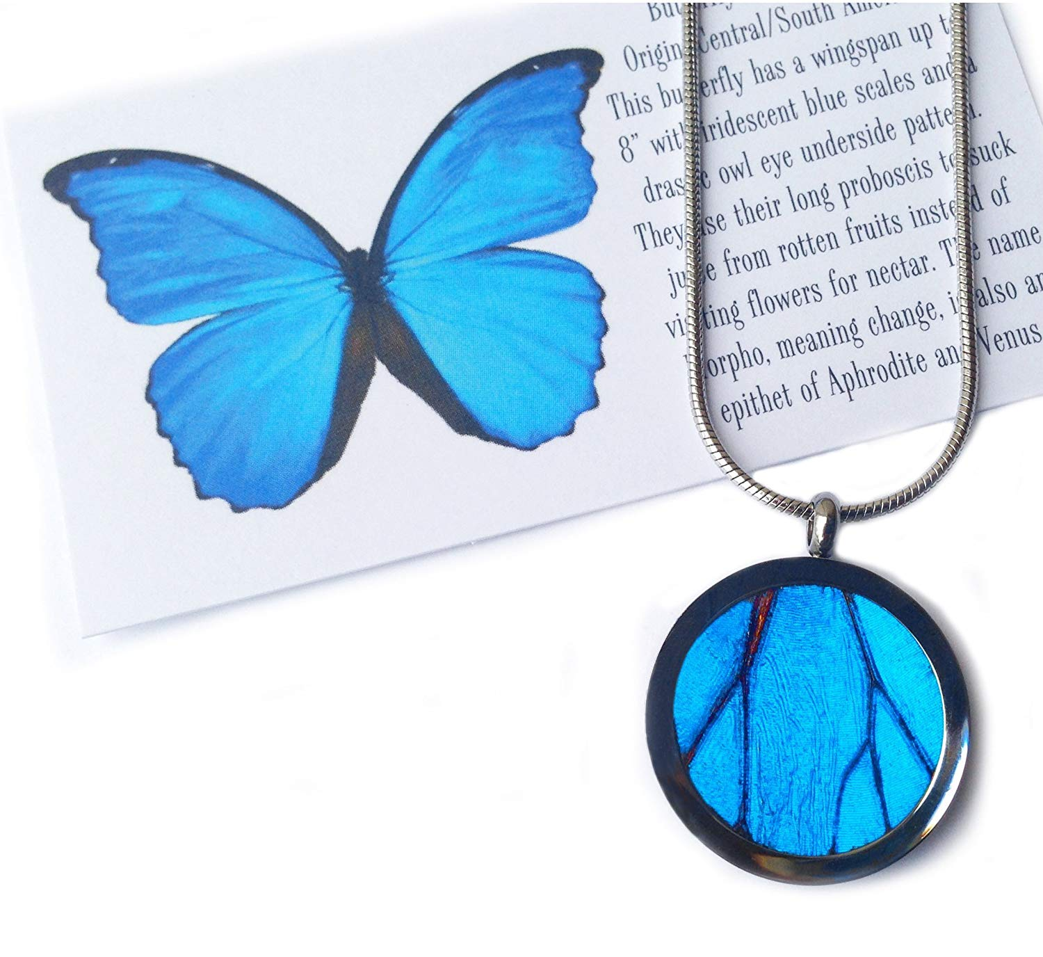 Get Quotations Real Erfly Wing Necklace Pendant Blue Erlfy Gifts For Women Handmade Jewelry