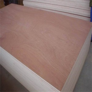 Edlon Wood Products low price 3mm 4mm 8mm poplar packing Commercial plywood 6mm from china