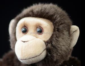 Moe The Chimp Found